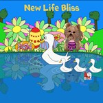 New Life Bliss