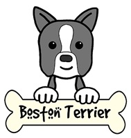 Boston Terrier Cartoon T-Shirts and Gifts