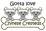 Three Chinese Crested Dogs (Gray Chinese Crested)