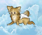 Long Coat Sky Angel Chihuahua