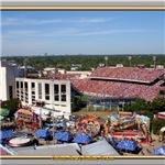 Cotton Bowl #1