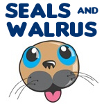Seal & Walrus Designs