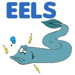 Eel Designs