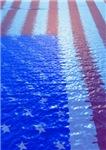 USA Pool