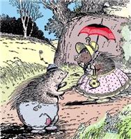Mr & Mrs Hedgehog