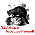 Beavers love good wood