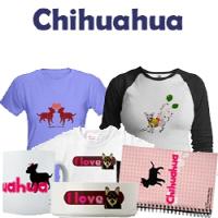 Chihuahua Pet Dog