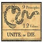 9 Principles 12 Values