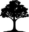 Tree T-shirt, Tree T-shirts