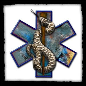 Rattlesnake Star of Life with EMT Attitude!