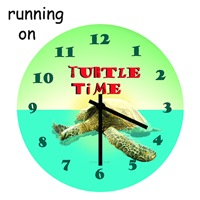 Turtle Time T Shirts