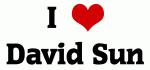 I Love David Sun