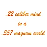 .22 Caliber Mind....