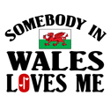 Somebody In Wales T-shirts
