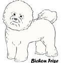 Bichon Frise T-shirt, Bichon Frise T-shirts