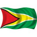 Wavy Guyana Flag