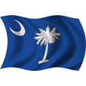 Wavy South Carolina Flag