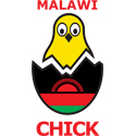 Malawi Chick