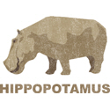 Hippopotamus T-shirt, Hippopotamus T-shirts