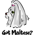 Maltese T-shirt, Maltese T-shirts & Maltese Gifts