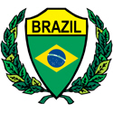 Stylized Brazil