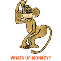 Whats Up Monkey Gifts & T-shirts