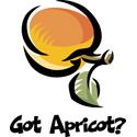 Apricot T-shirt, Apricot T-shirts