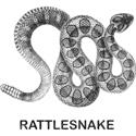 Vintahe Rattlesnake