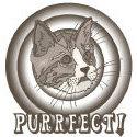 Retro Purrfect Cat