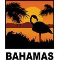 Flamingo Bahamas