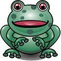 Cute 3D Frog Merchandise