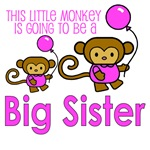 This Little Monkey Big Sister