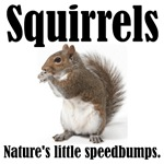 Squirrel Bumps