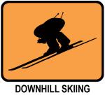Downhill Skiing (orange)
