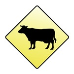 CAUTION! Cattle Crossing