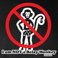Not a Belay Monkey