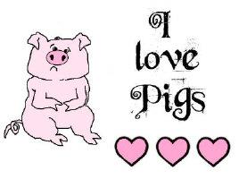 PIG DESIGNS