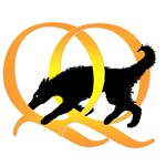 Dog Agility Designs