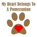 My Heart Belongs To A Pomeranian