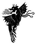 Black Flying Dragon