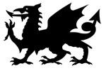 Black Gargoyle Dragon