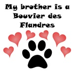 My Brother Is A Bouvier des Flandres