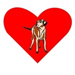 Wirehaired Vizsla Heart