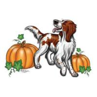 Irish Red White Setter Autumn