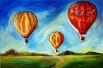 hot air balloons in the summer sky