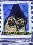 PUGS in Window Design