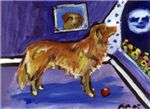 NOVIA SCOTIA DUCK-TOLLING RETRIEVER moon