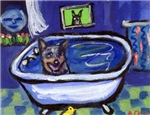 AUSTRALIAN CATTLE DOG BATH