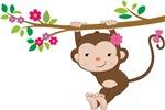 Swinging Baby Monkey