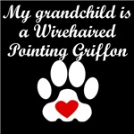 Wirehaired Pointing Griffon Grandchild
